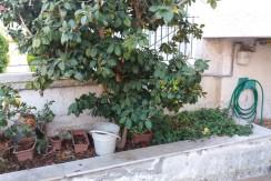 villaricca_villa_vendita_giardino