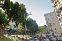 Piazza Cavour-Vergini adiacenze trilocale in vendita Napoli