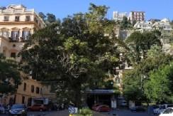 Piazza Amedeo – Parco Margherita appartamento in vendita Napoli